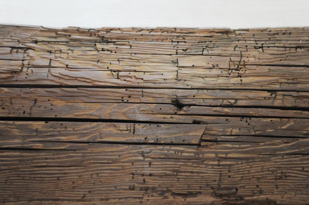 Briccole vecchie per pavimenti tarlatura naturale